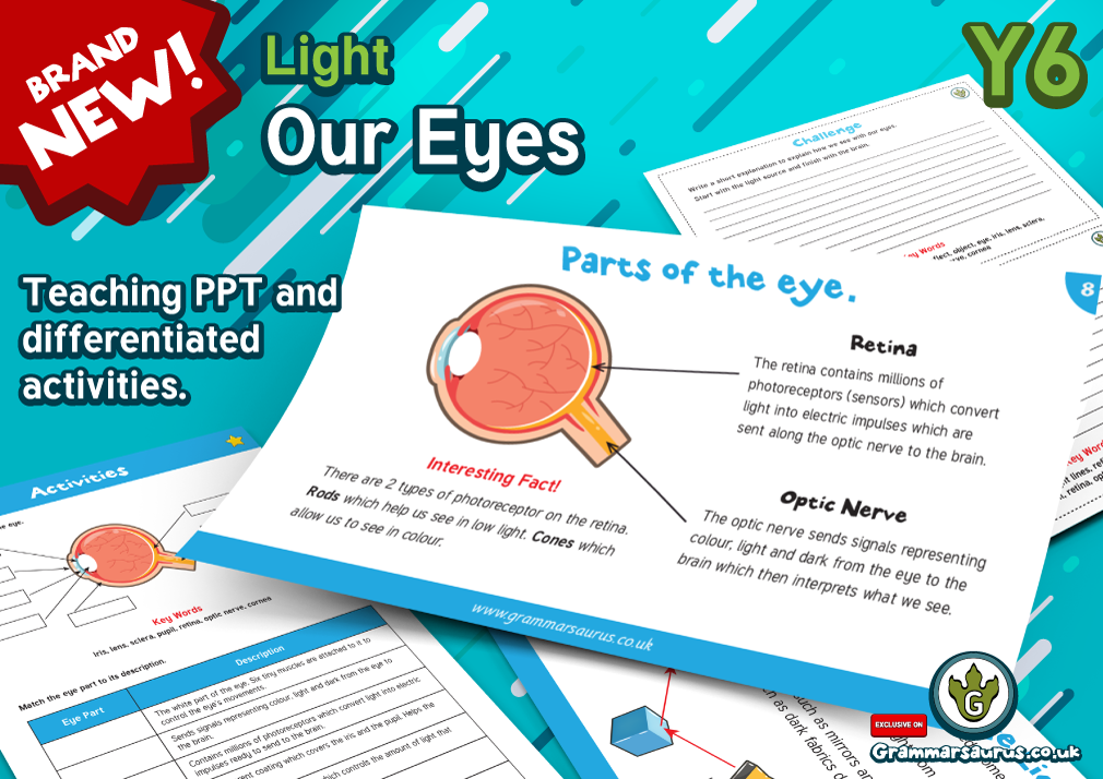 Year 6 science light our eyes lesson 3 grammarsaurus this pack will enable your pupils to explain that we see things because light travels from light sources to our eyes or from light sources to objects and ccuart Choice Image