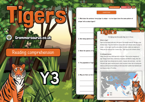 Year 3 Reading Comprehension Pack – Tigers